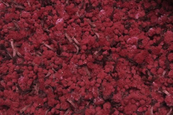 Thảm Dumrod Đỏ